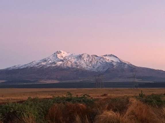 JSS New Zealand